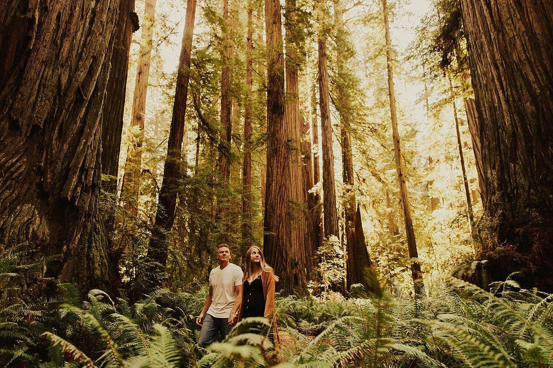 redwoods-california-maternity-photos_4289.jpg