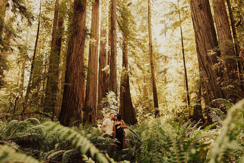 redwoods-california-maternity-photos_4290.jpg