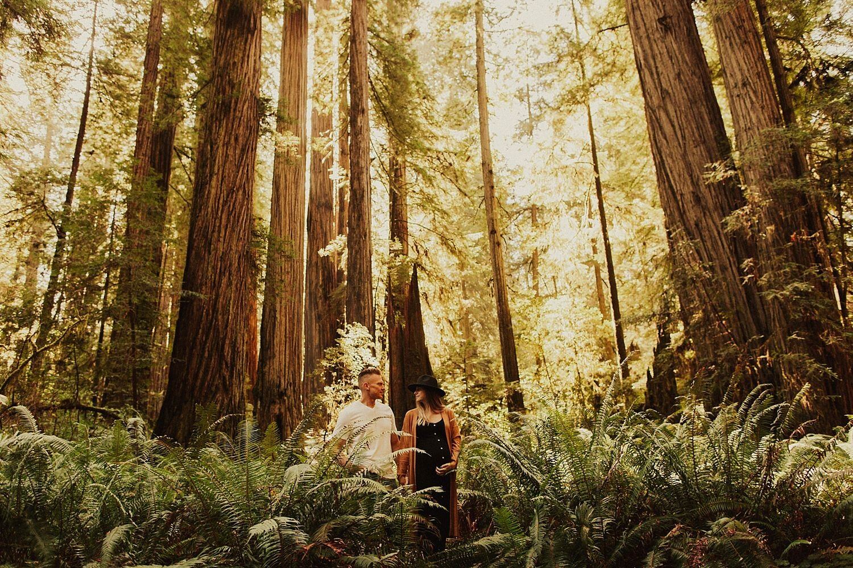 redwoods-california-maternity-photos_4291.jpg