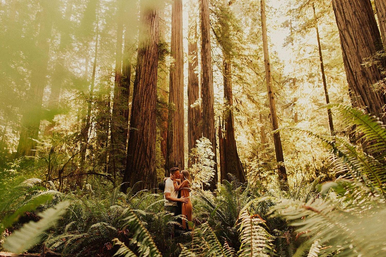 redwoods-california-maternity-photos_4293.jpg