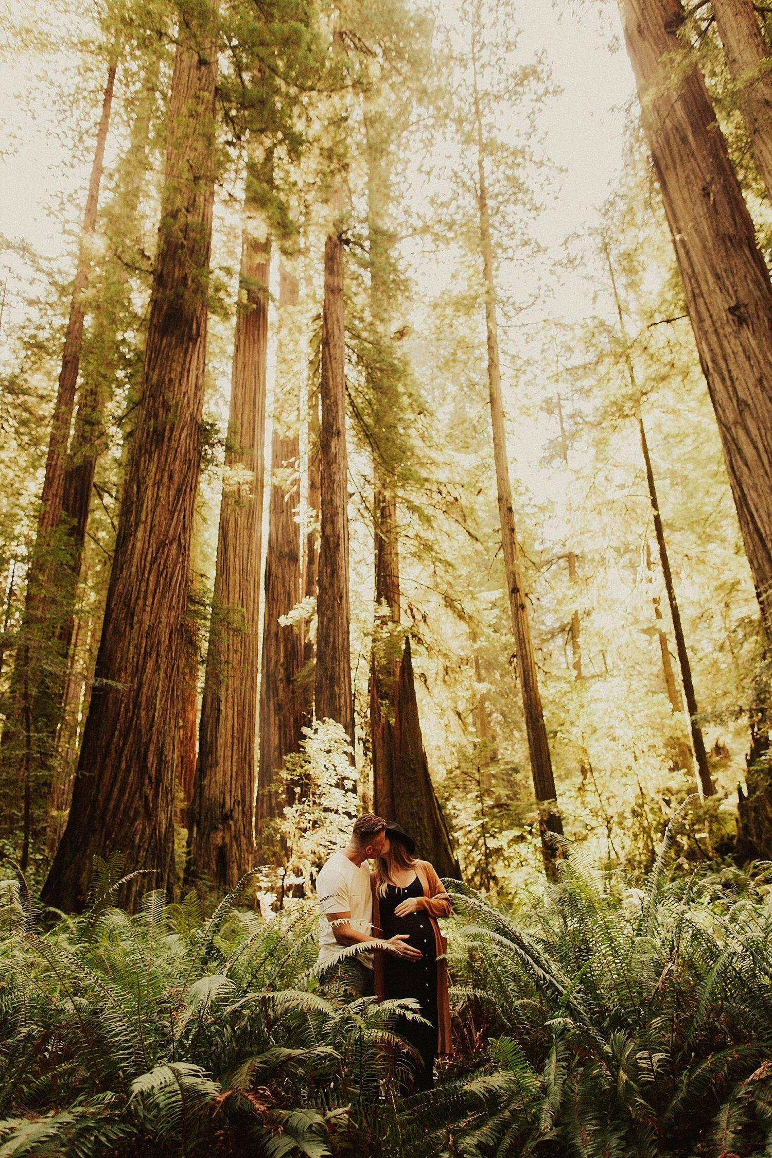 redwoods-california-maternity-photos_4292.jpg