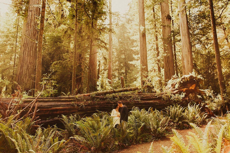 redwoods-california-maternity-photos_4315.jpg