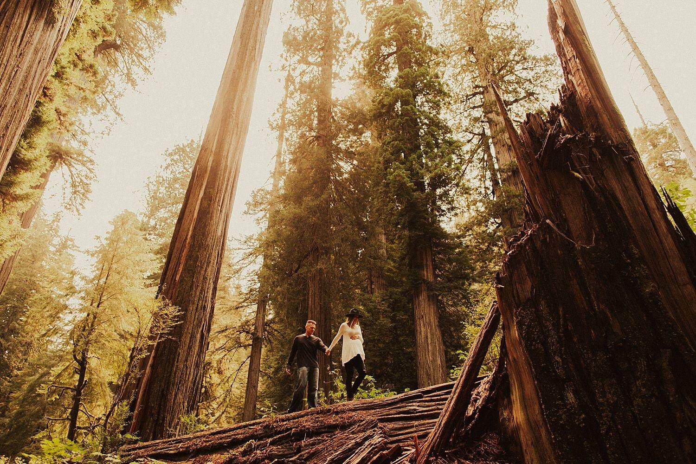 redwoods-california-maternity-photos_4320.jpg