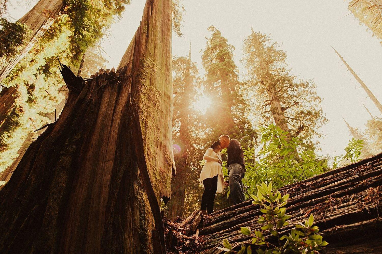 redwoods-california-maternity-photos_4323.jpg