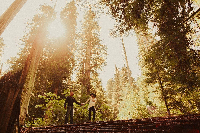 redwoods-california-maternity-photos_4325.jpg