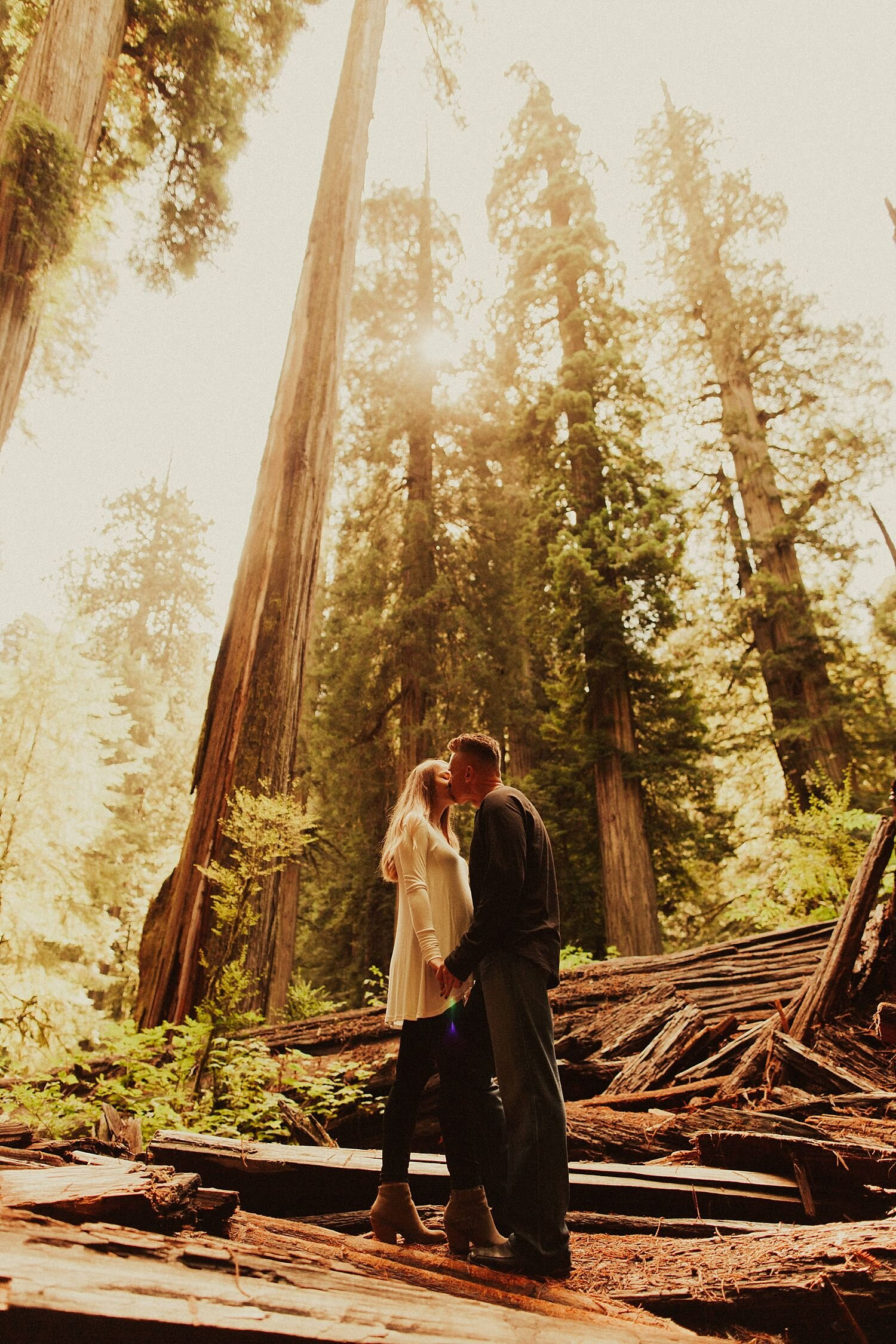 redwoods-california-maternity-photos_4330.jpg