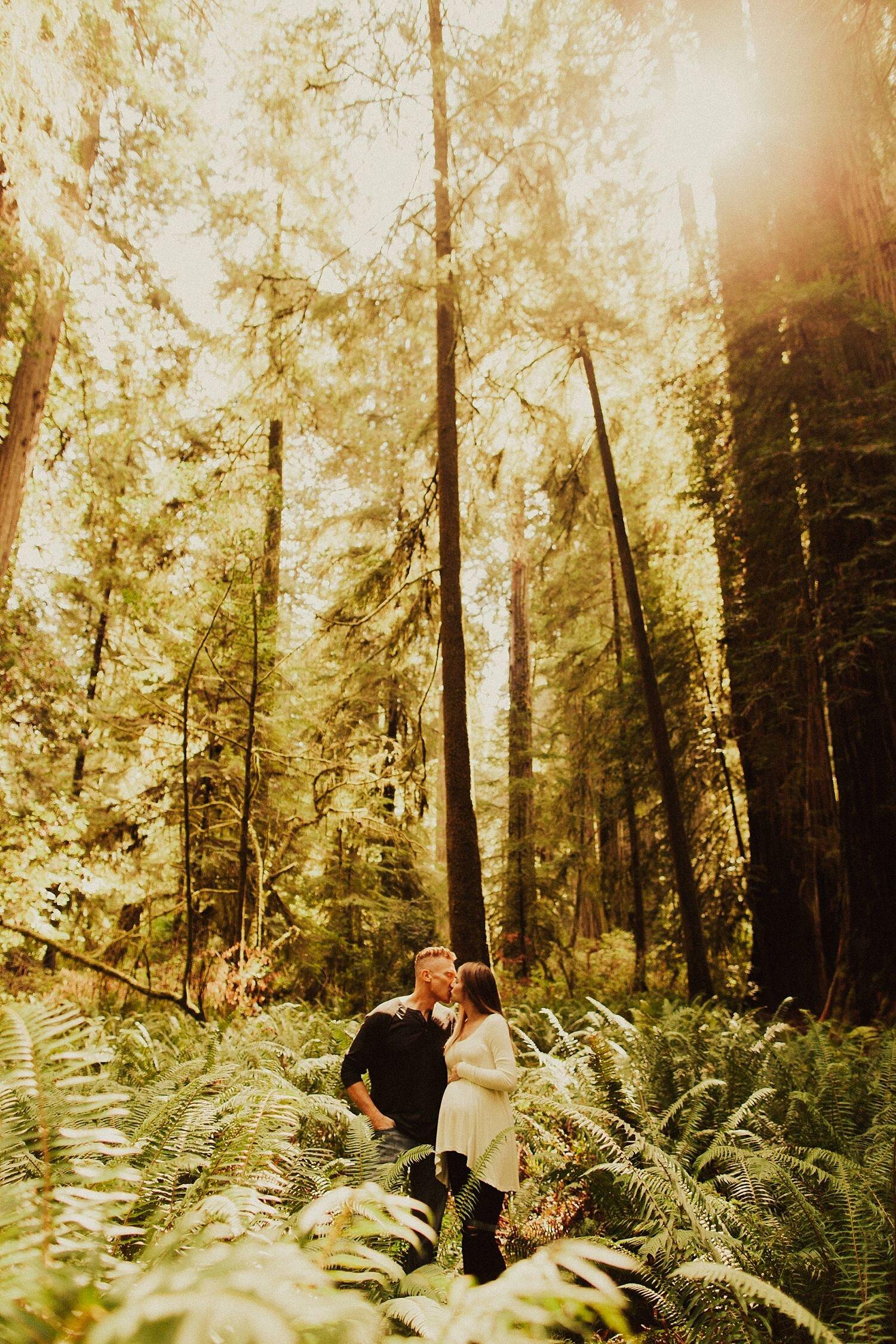 redwoods-california-maternity-photos_4333.jpg
