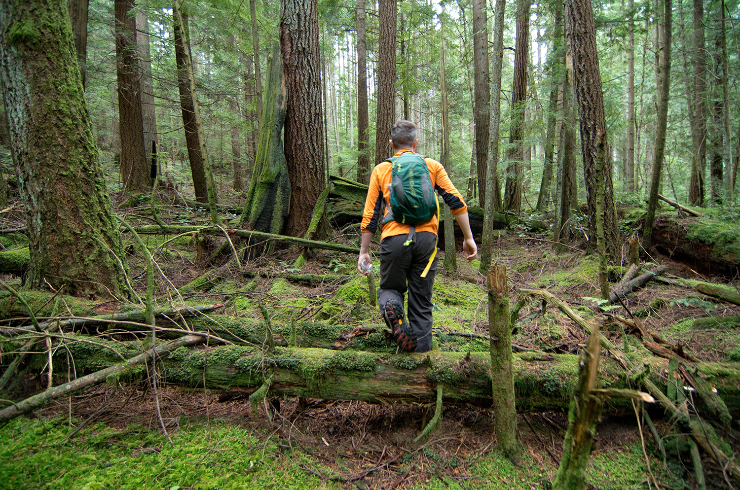 Before beginning to build, Martin spent several days hiking around the area while deciding where the trail should go. He flagged a rough line using yellow tape, which was gradually refined as the work progressed.