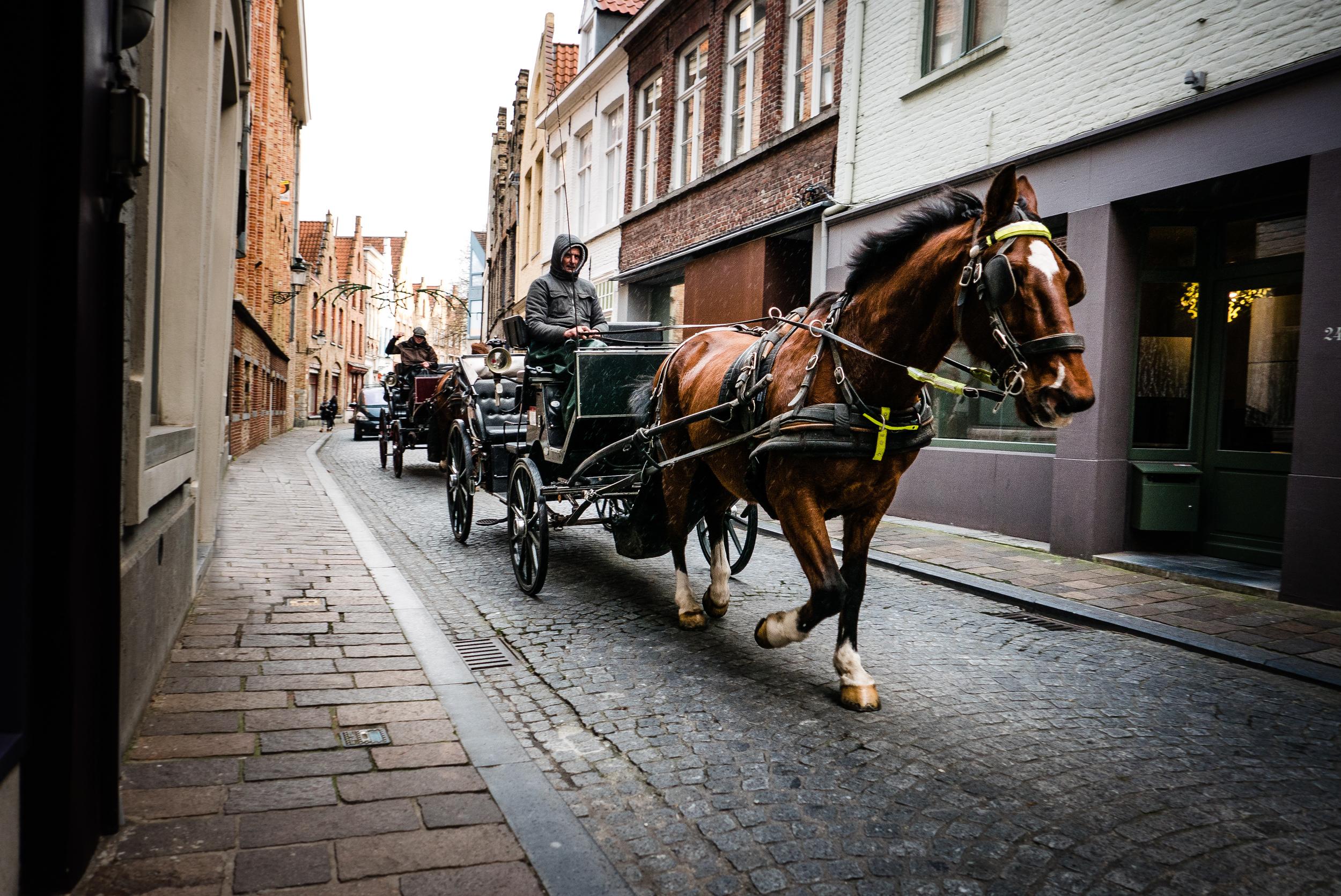 Bruges - Xmas break-92.jpg