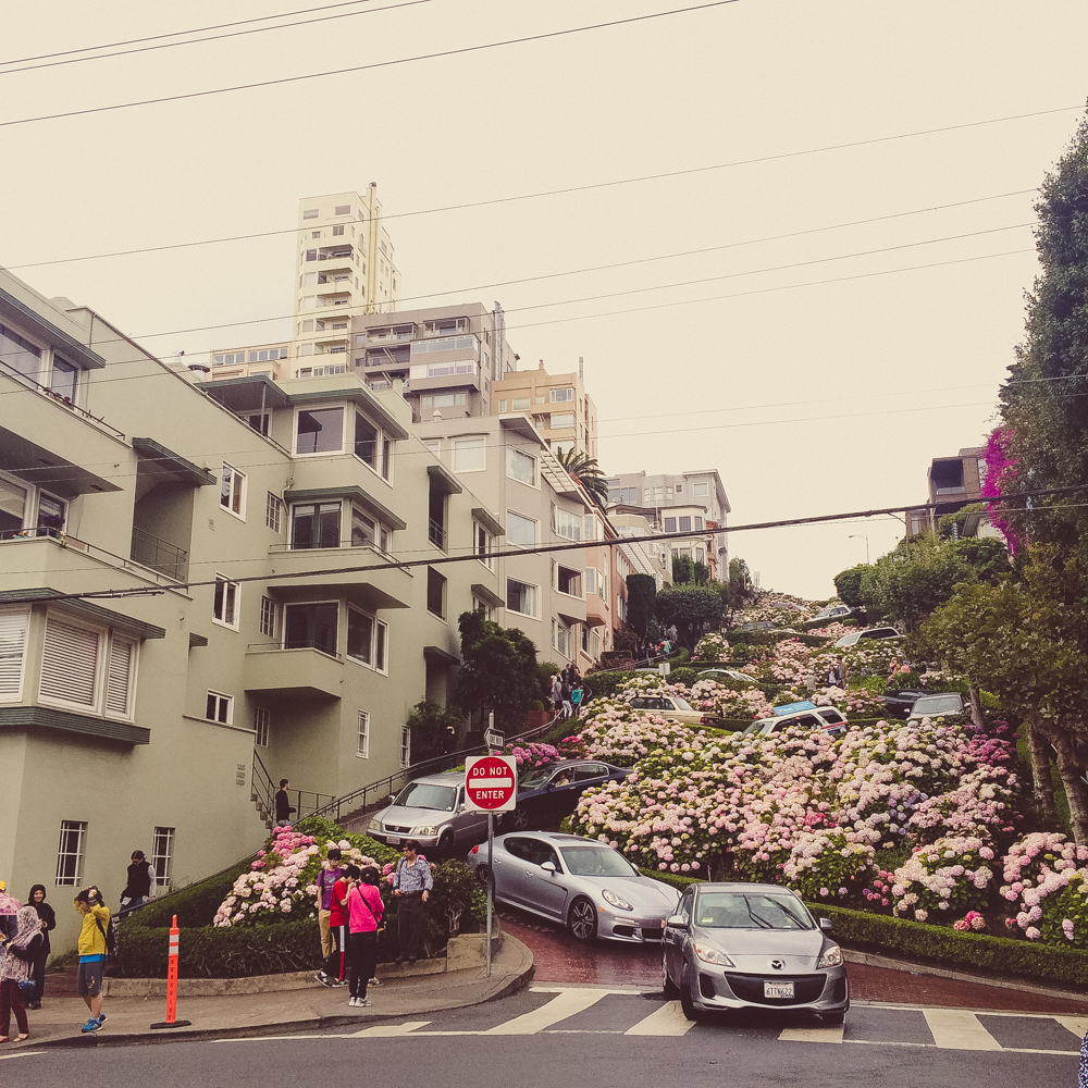 Visiting Lombard Street. Not pictured: the massive crowds of tourists standing in the middle of the road and locals beeping their cars for people to move out of their way.