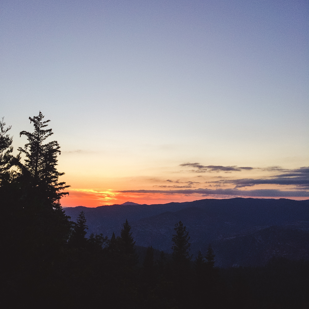 We trekked through the forest to find a clearing in the trees to see the sunset from.