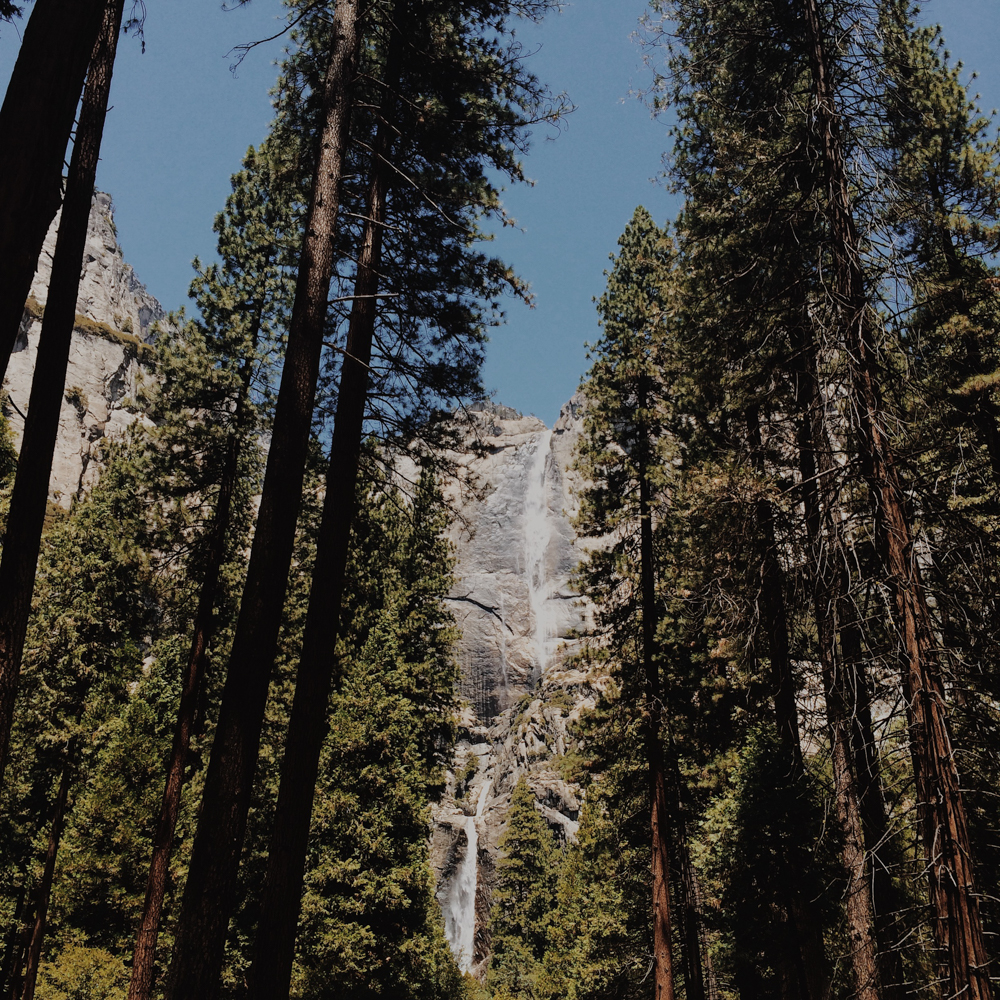 Our first view of Upper and Lower Yosemite Falls.