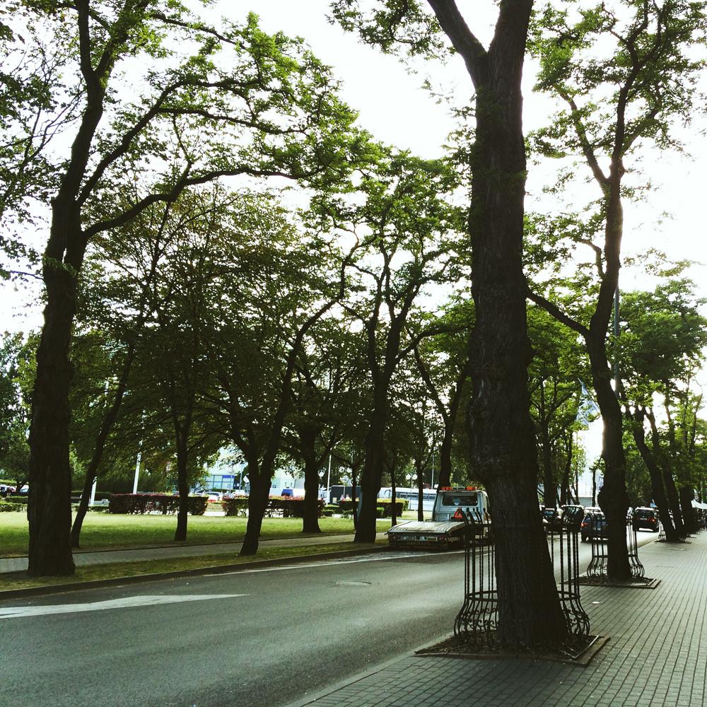 The city of Sopot.