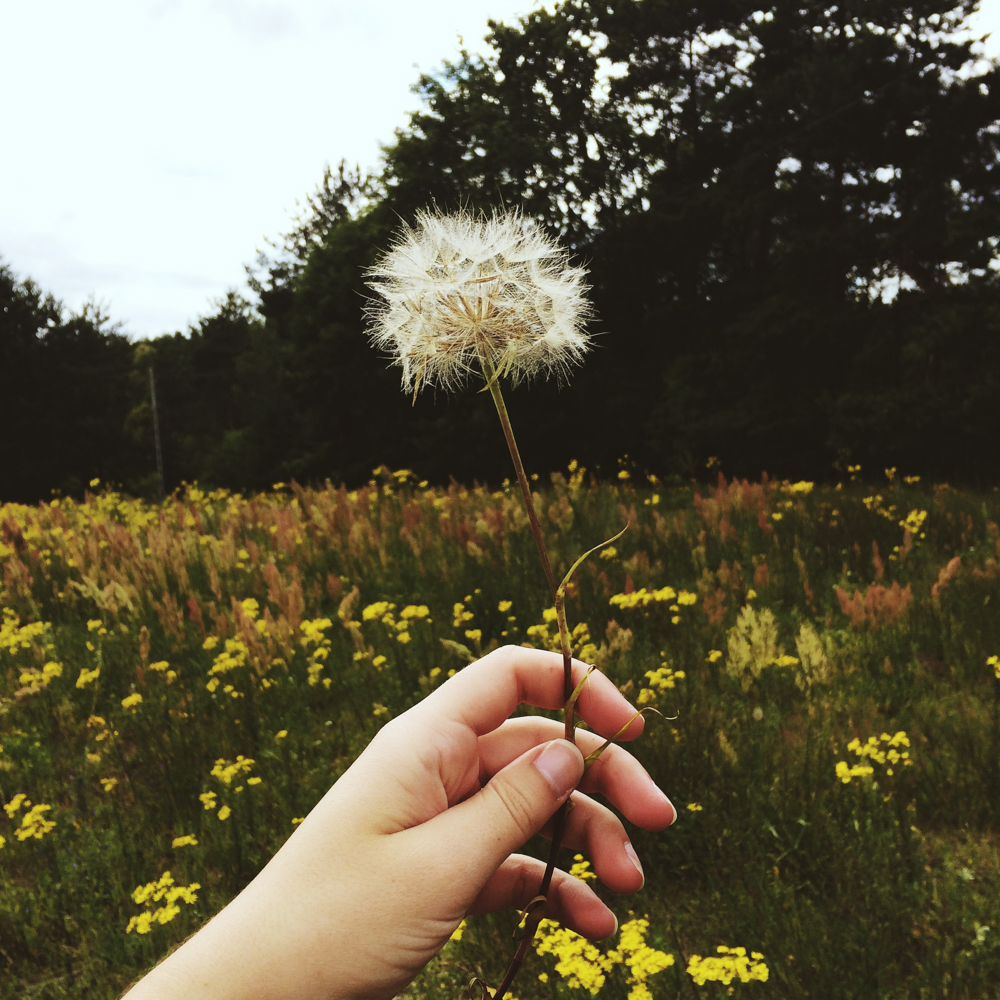 julia-trotti_instagram-diary_24.jpg