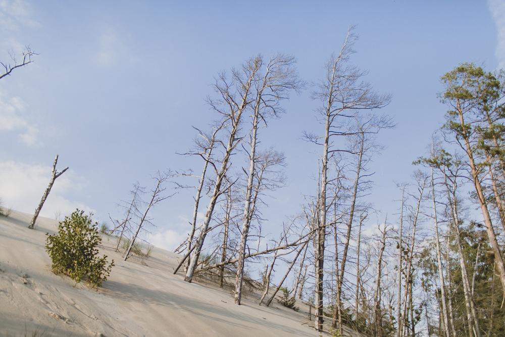 Visiting the sand dunes at Slowinski National Park.