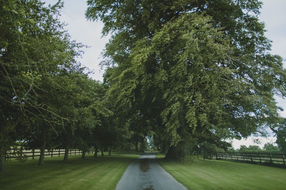 The beautiful driveway to our bed & breakfast home.