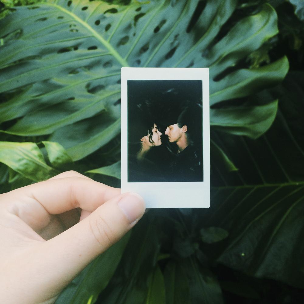 Polaroids at Waimea Valley.