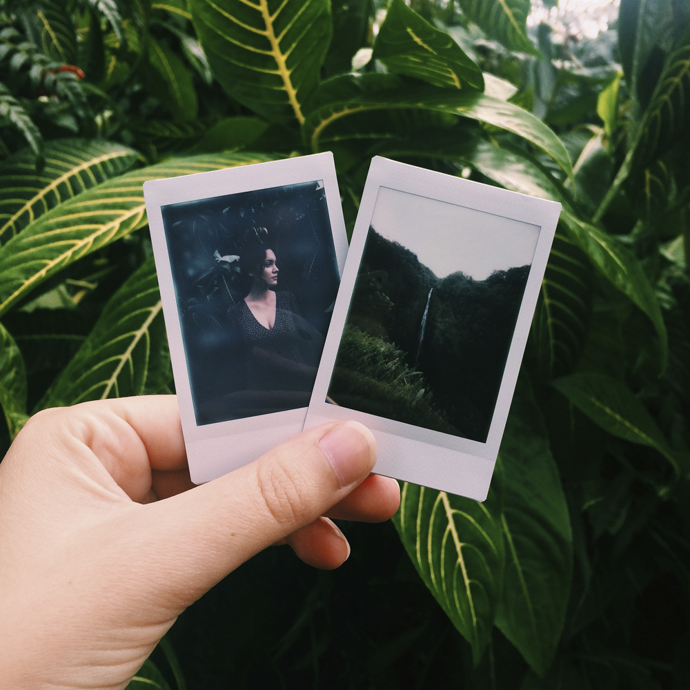 Polaroids on our hike back from Akaka Falls.