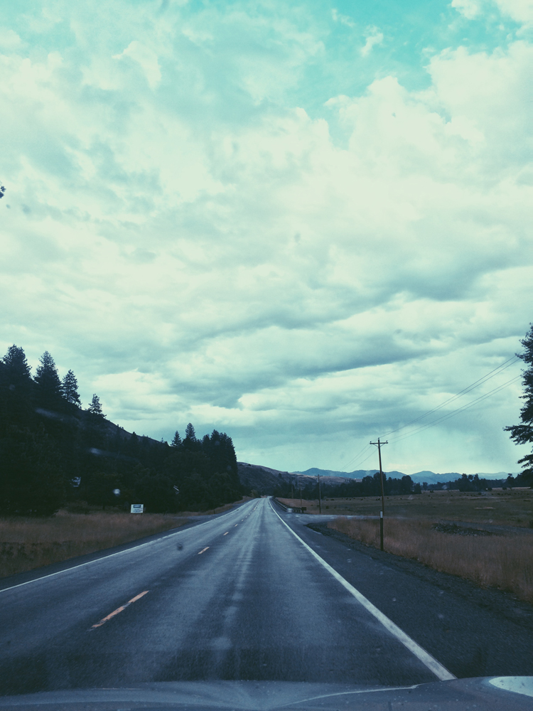 On our 5 and a half hour road trip from North Cascades to Mt Rainier National Park.