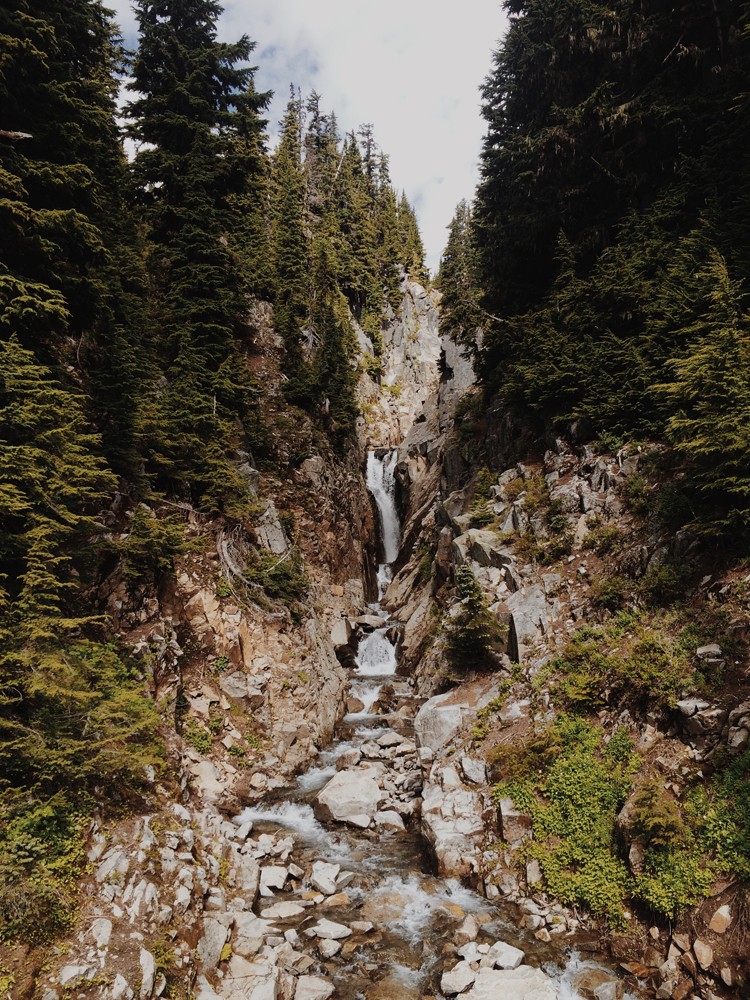 Exploring Mt Rainier National Park in the morning while it was still nice and empty.