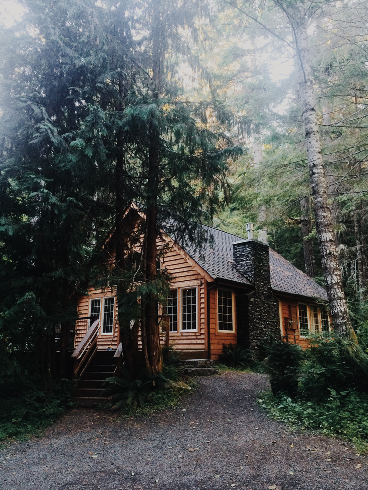 We arrived to our cabin in Mt Rainier National Park after a super long drive from North Cascades!