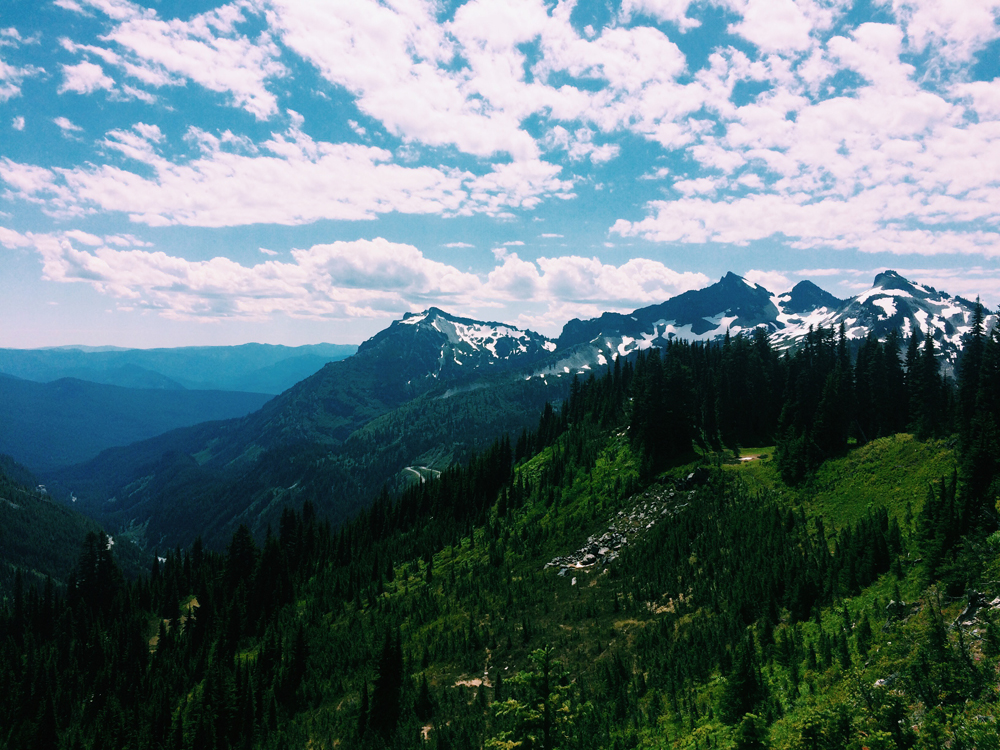 The amazing views on our hike in Mt Rainier.