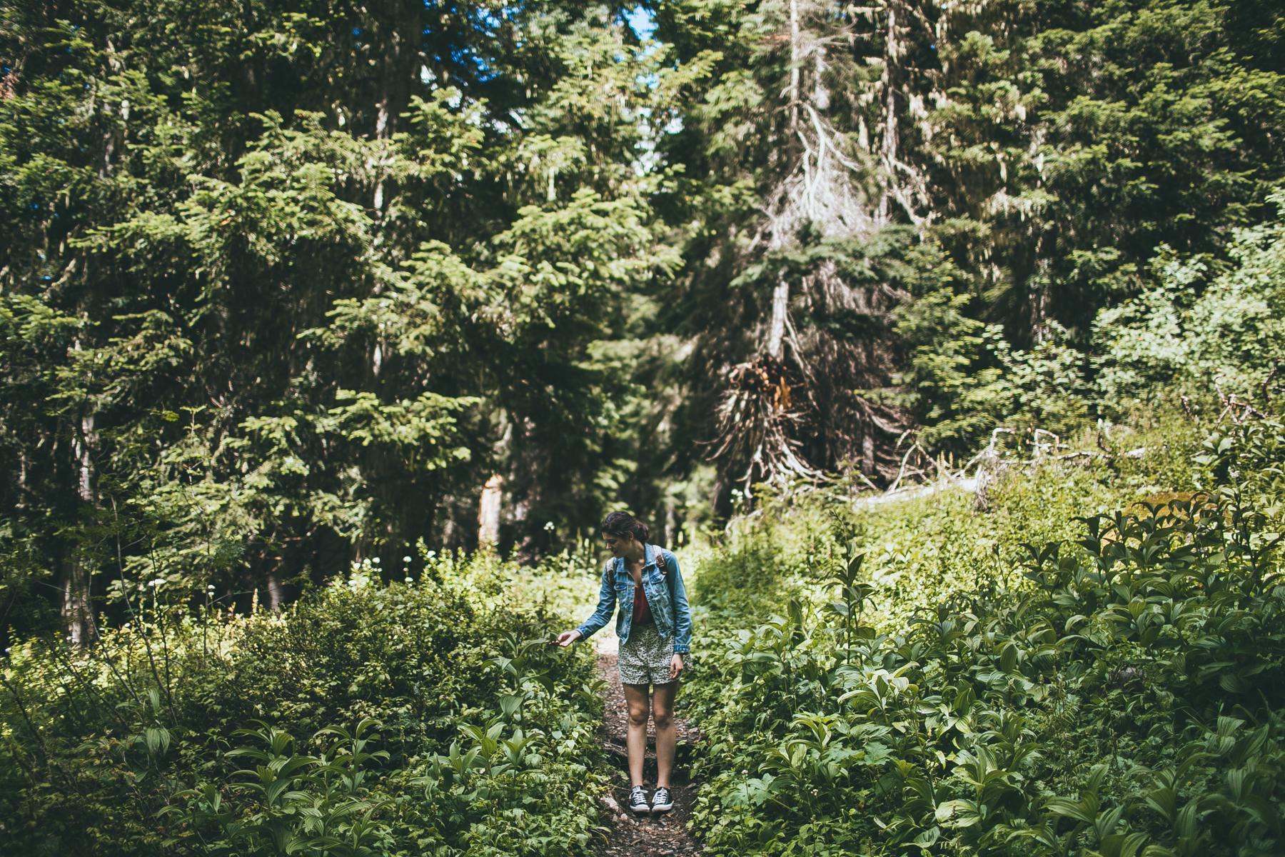 julia-trotti_north-cascades_017.jpg