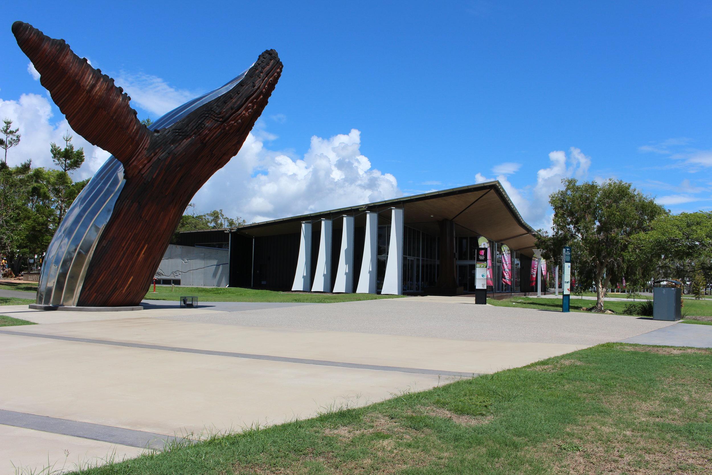 Hervey Bay Humpback, Fraser Coast Queensland