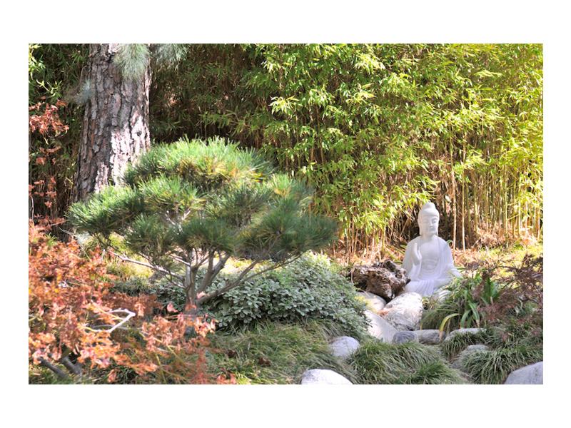 NATURE_HORI.JPEG_0007_Tranquility.jpg