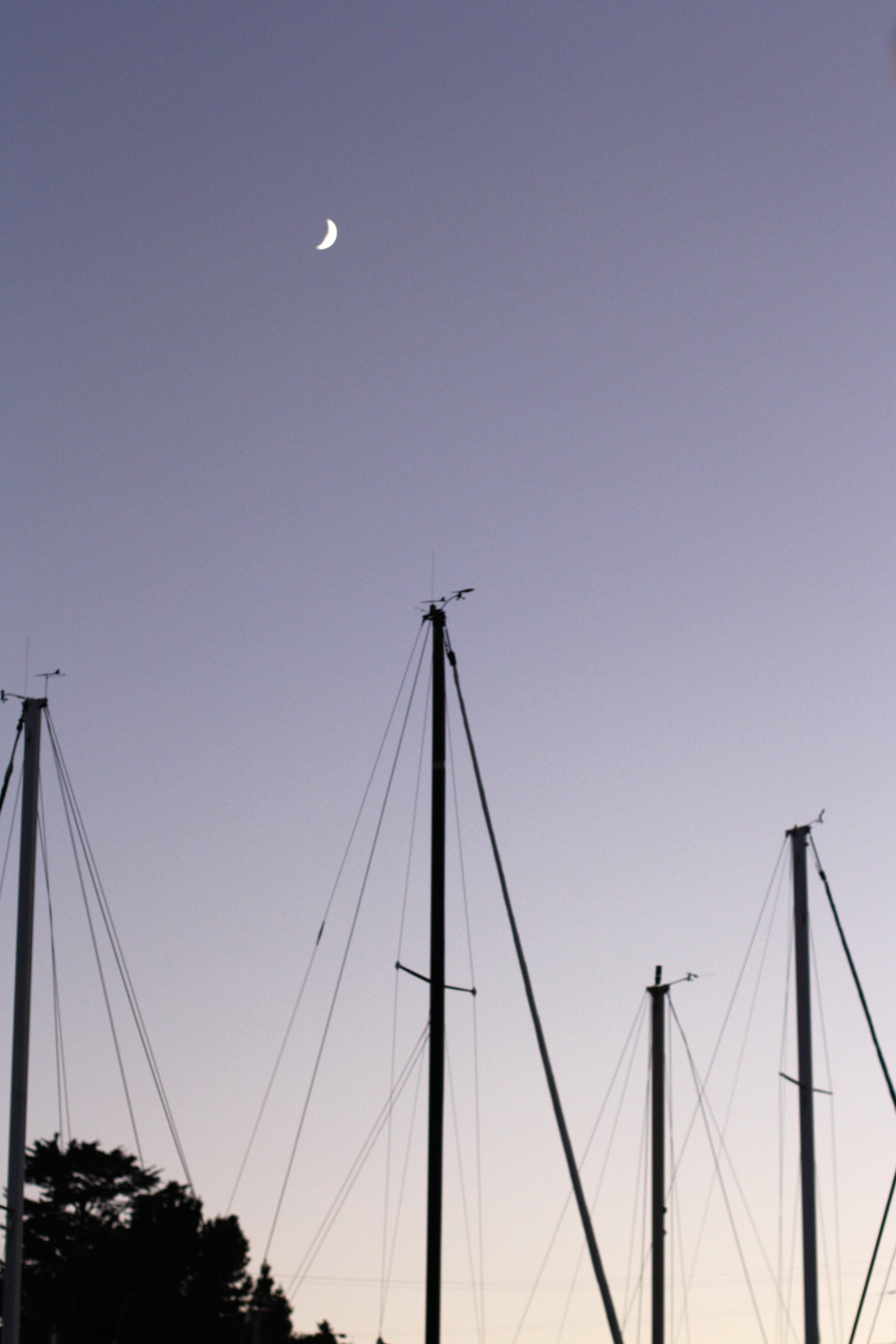 Chardonnay-Sail_harbor-moon_heatherbyhand.jpg