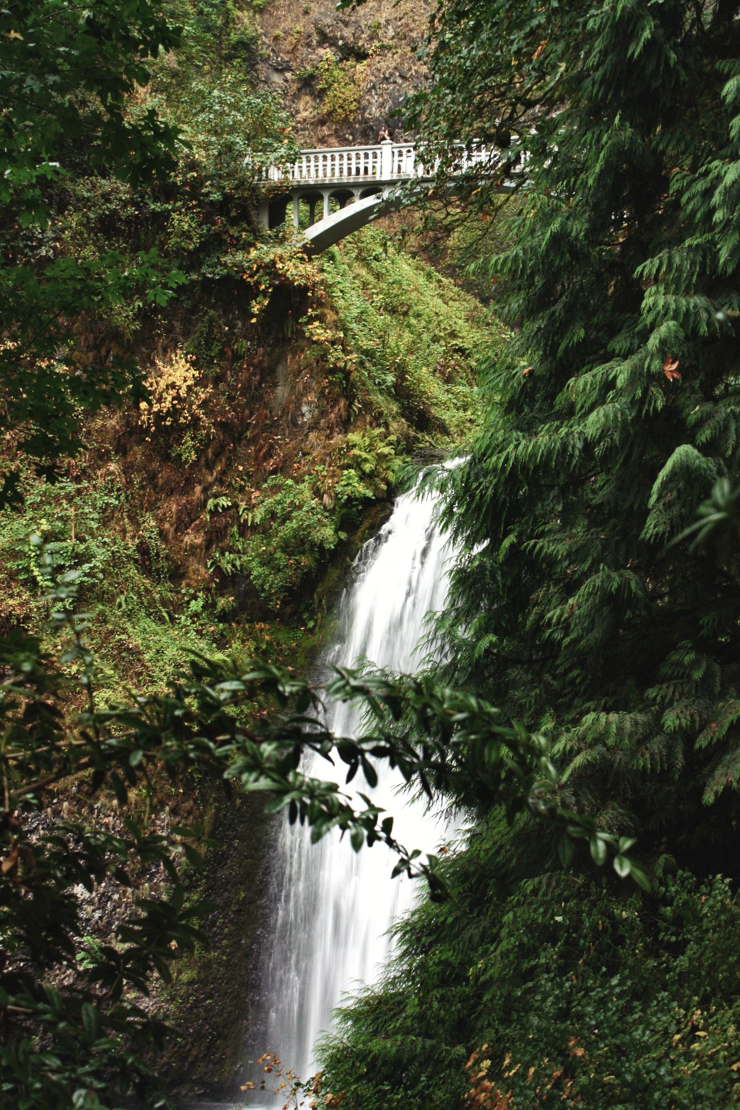 Multnomah-Falls-side_heatherbyhand.jpg