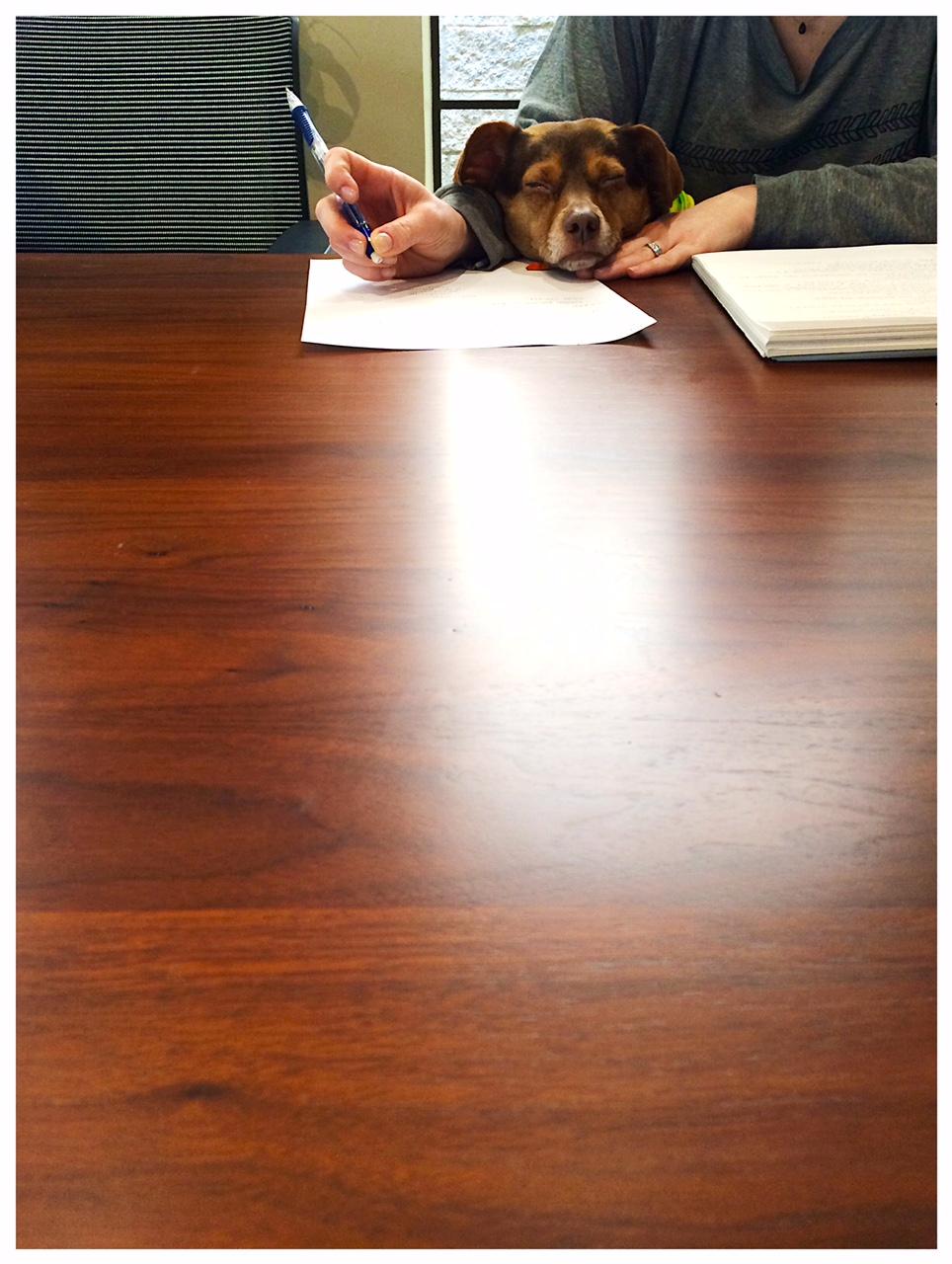 Rudybega-meetings_heather-by-hand.JPG