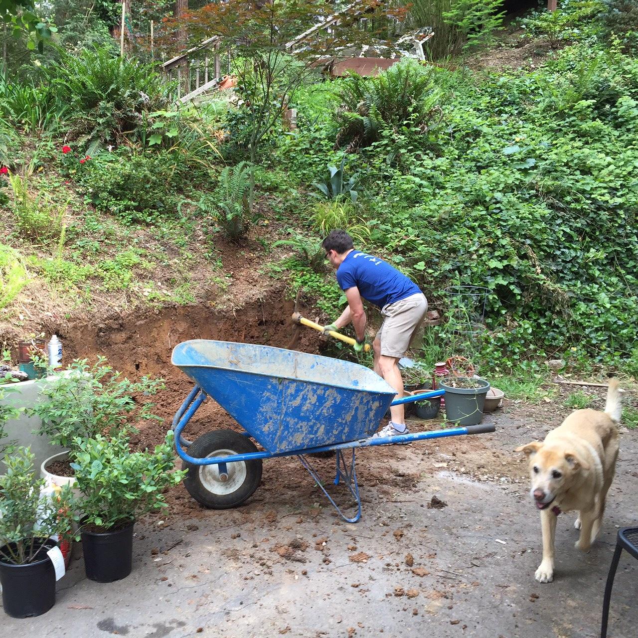 Garden-excavation_heather-by-hand.JPG