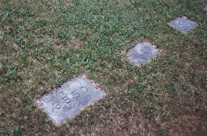 Numbered Grave Stones at Orillia. Photo: Thelma Wheatley.