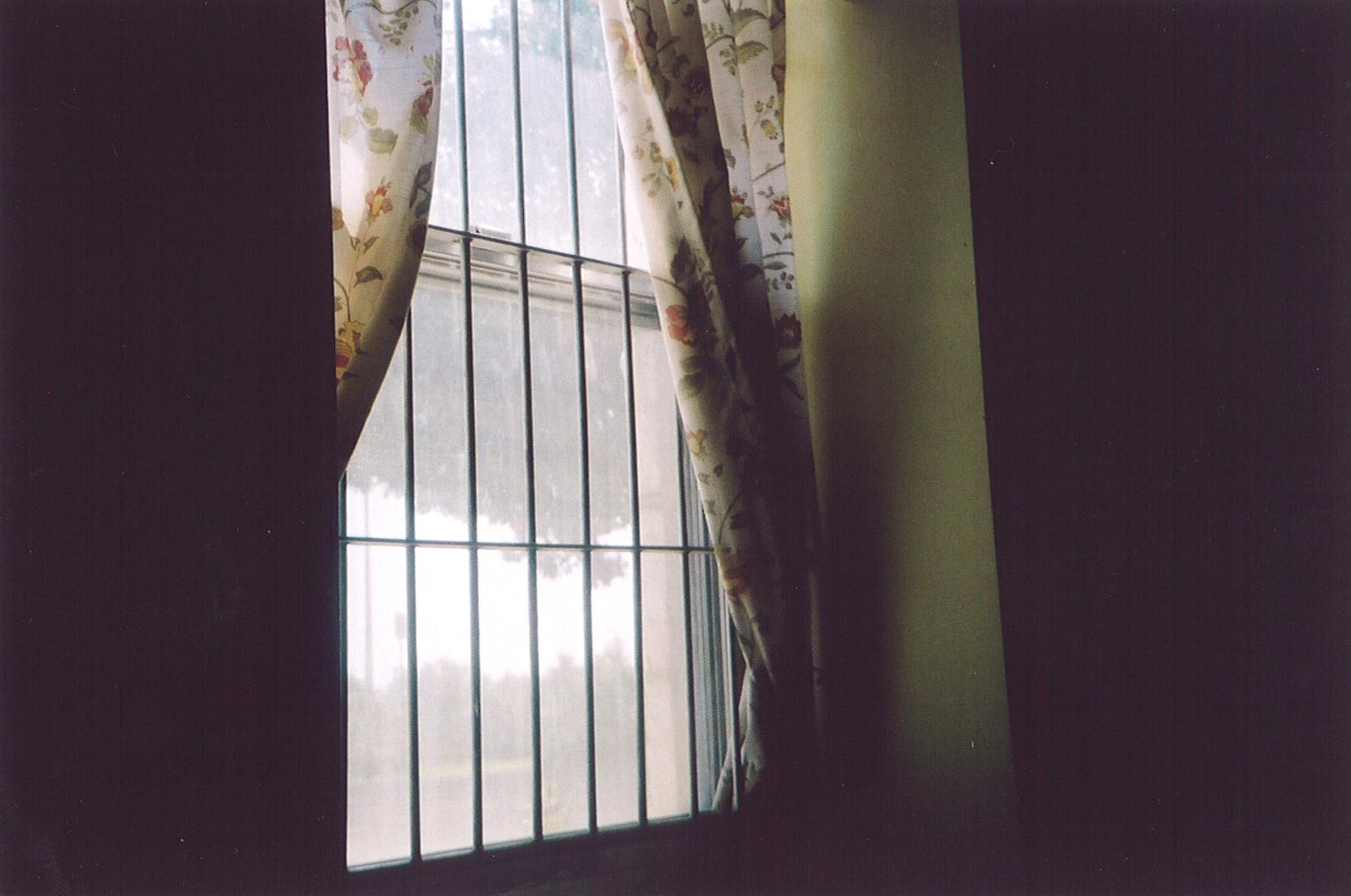 Window. Photo: Thelma Whealtey.