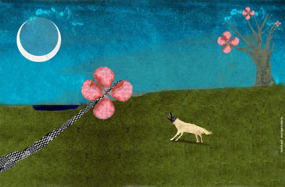 """""""Moon dog"""""""