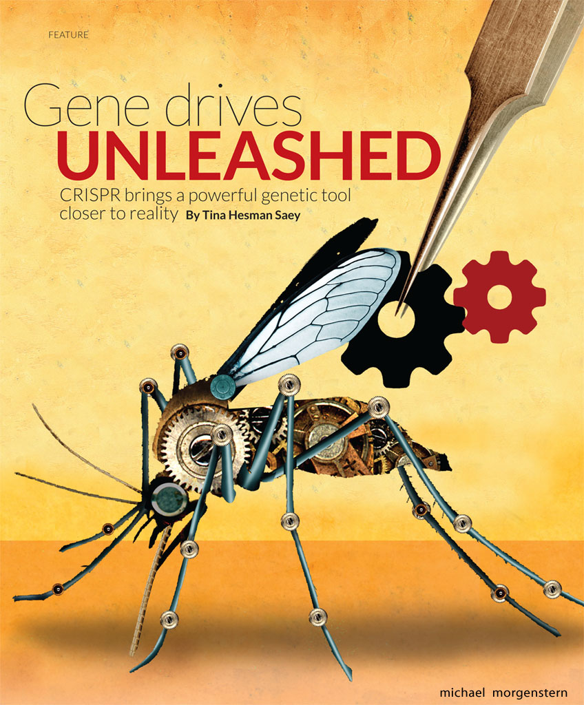 """Gene drives unleashed"", for Science News"