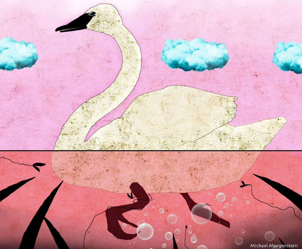 Swan's Tale