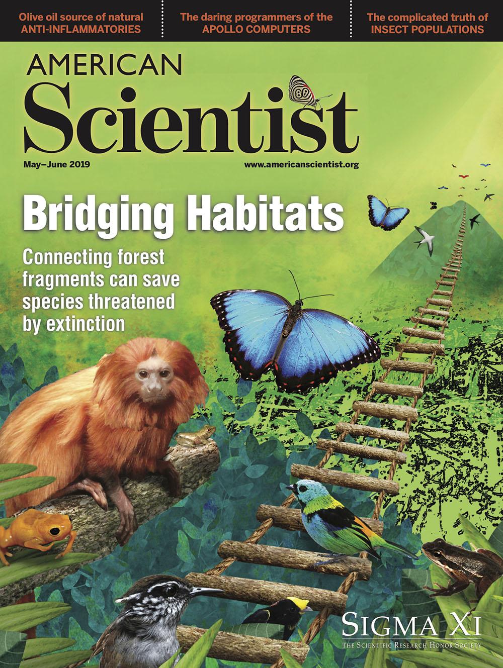 Bridging Habitats