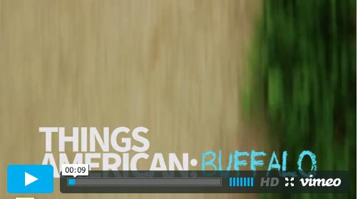 ThingsAmerican_Buffalo