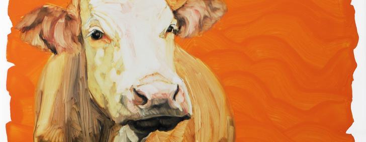 Animal Portraits 2013