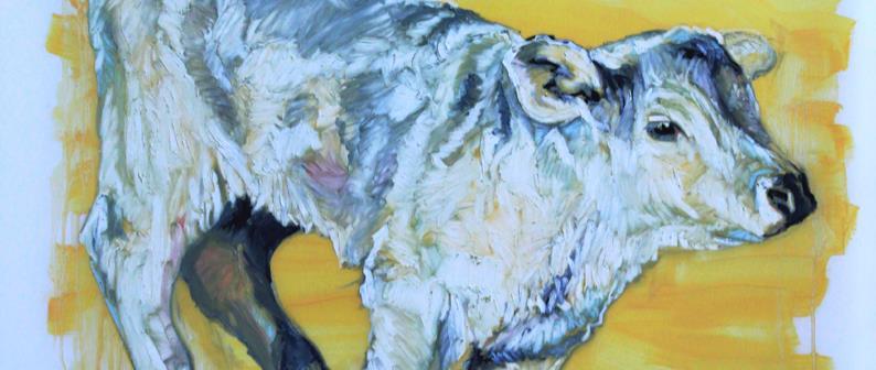 Animal Portraits 2012