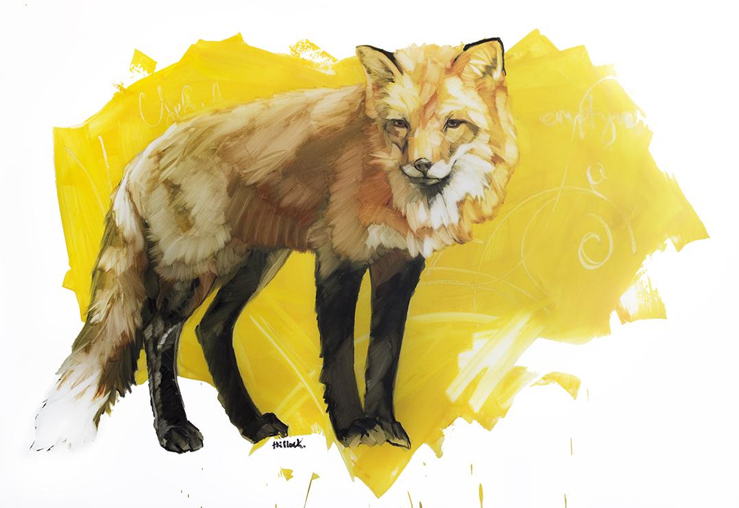 red fox on yellow web.jpg