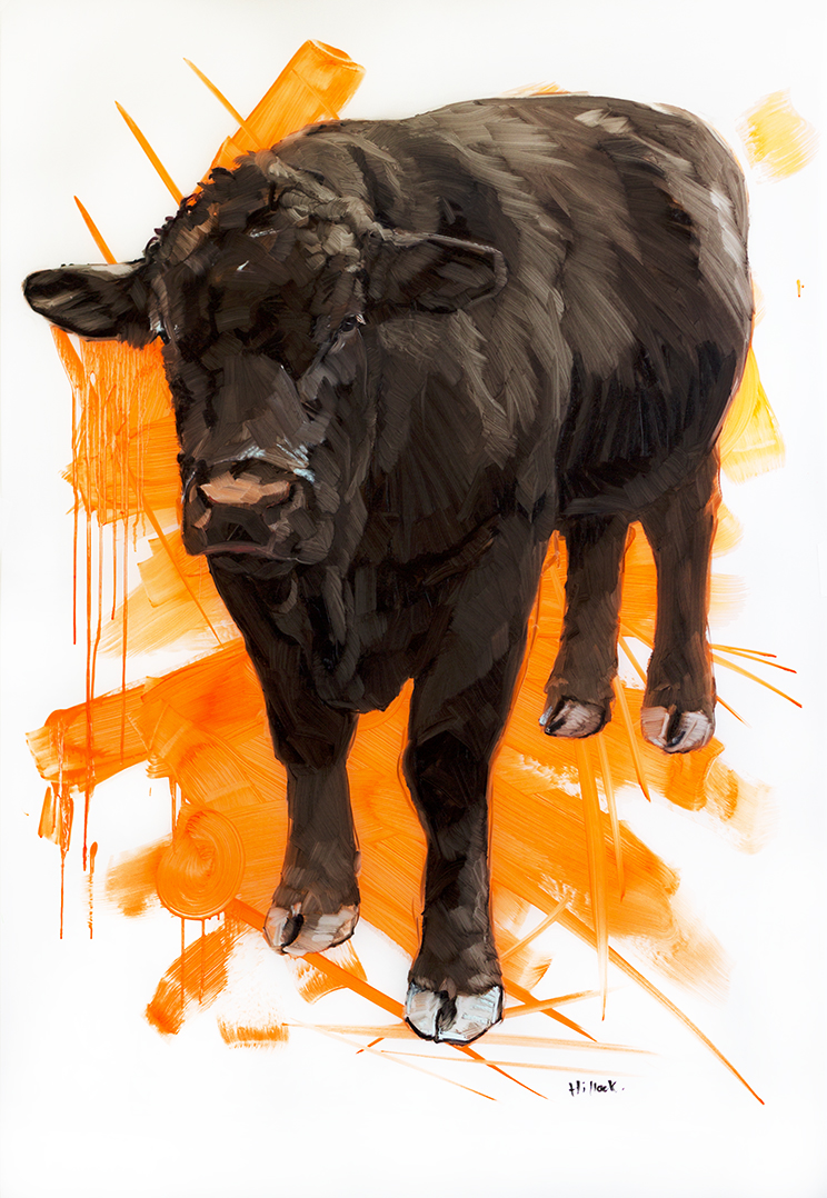 Wilson on Orange web.jpg
