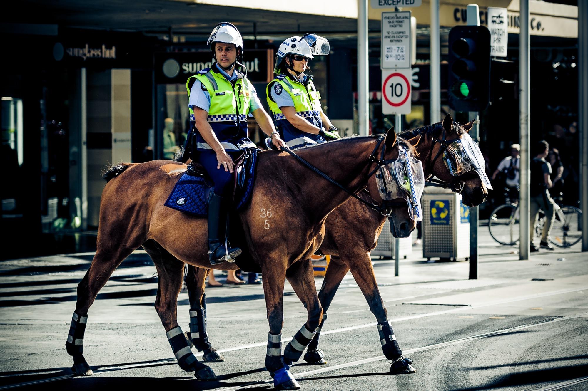 Horseback in the city