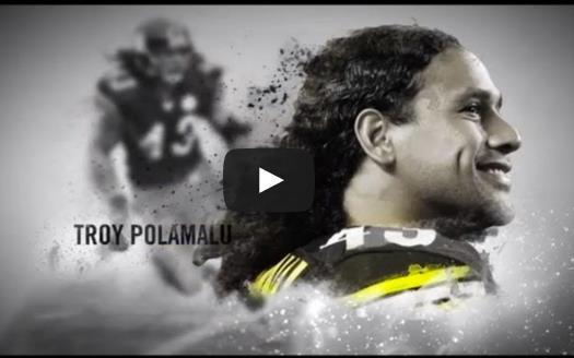 "Troy Polamalu Will Cut Hair For First Time In 10 Years.  To Benefit Charity Is there such a thing as a ""good hair day?"" If so, for PiHsburgh Steelers safety Troy Polamalu, Nov. 11 will be that day. The player, who hasn't cut his luscious locks in 10 years, has vowed to get a   [READ MORE]"