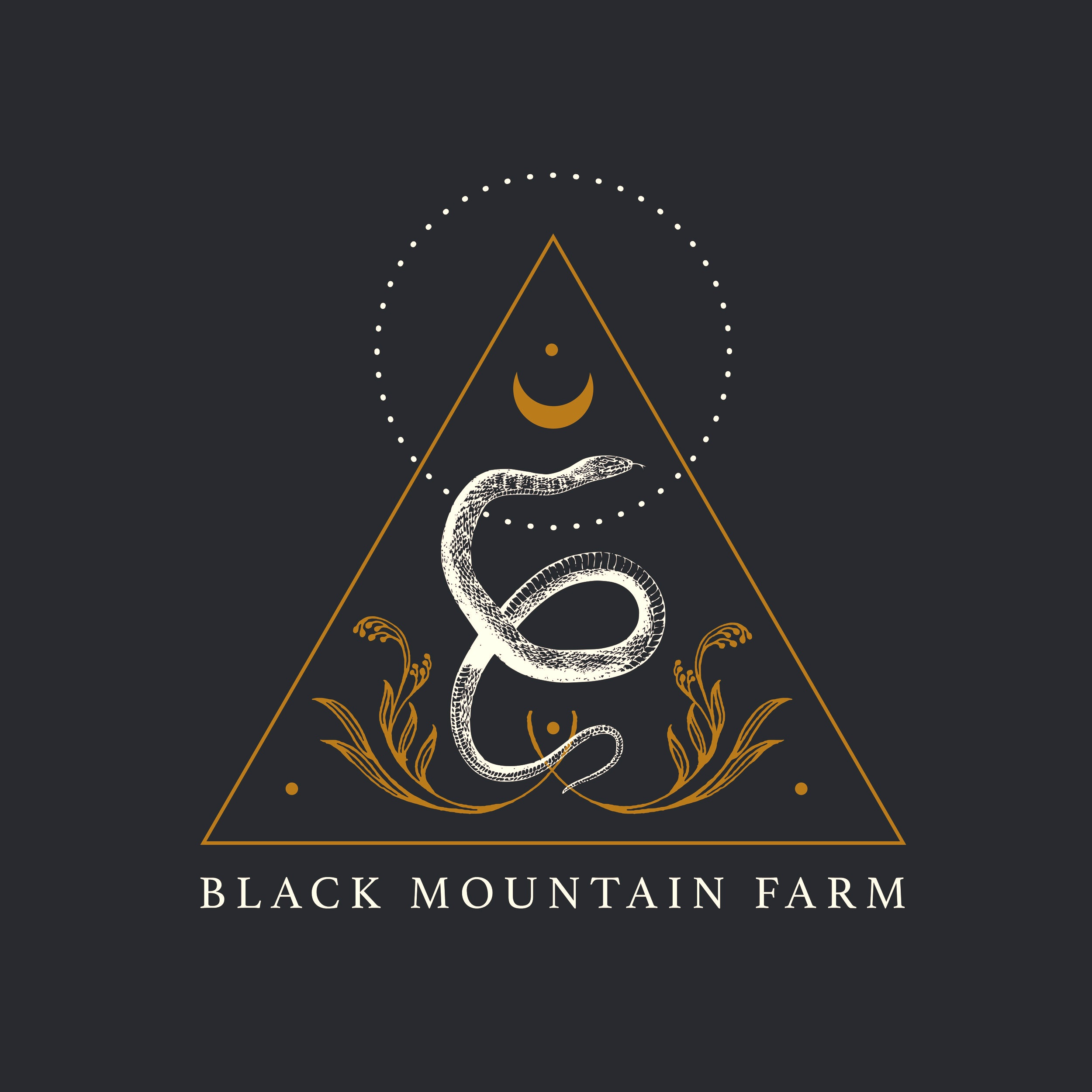 Black Mountain Farm Logo Concept