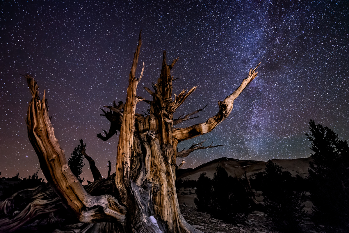 Pointing to the Milky Way. Technical Details:  Nikon D800, Nikkor 14-24 at f2.8 for 30 seconds at 4000 ISO  (click image to enlarge)