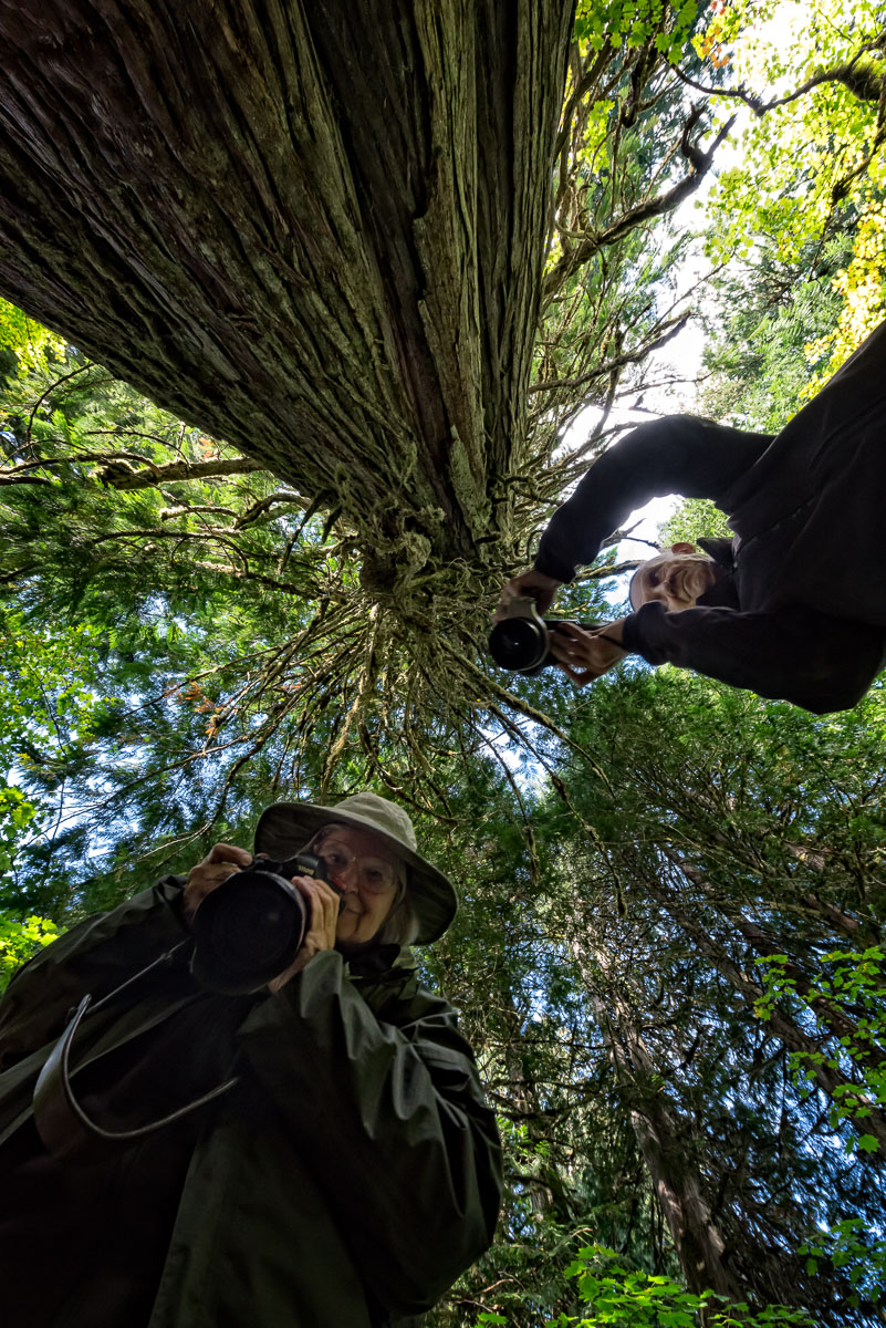 Who's Photographing Who?: Yva Momatiuk and John Eastcott in Mount Rainier National Park