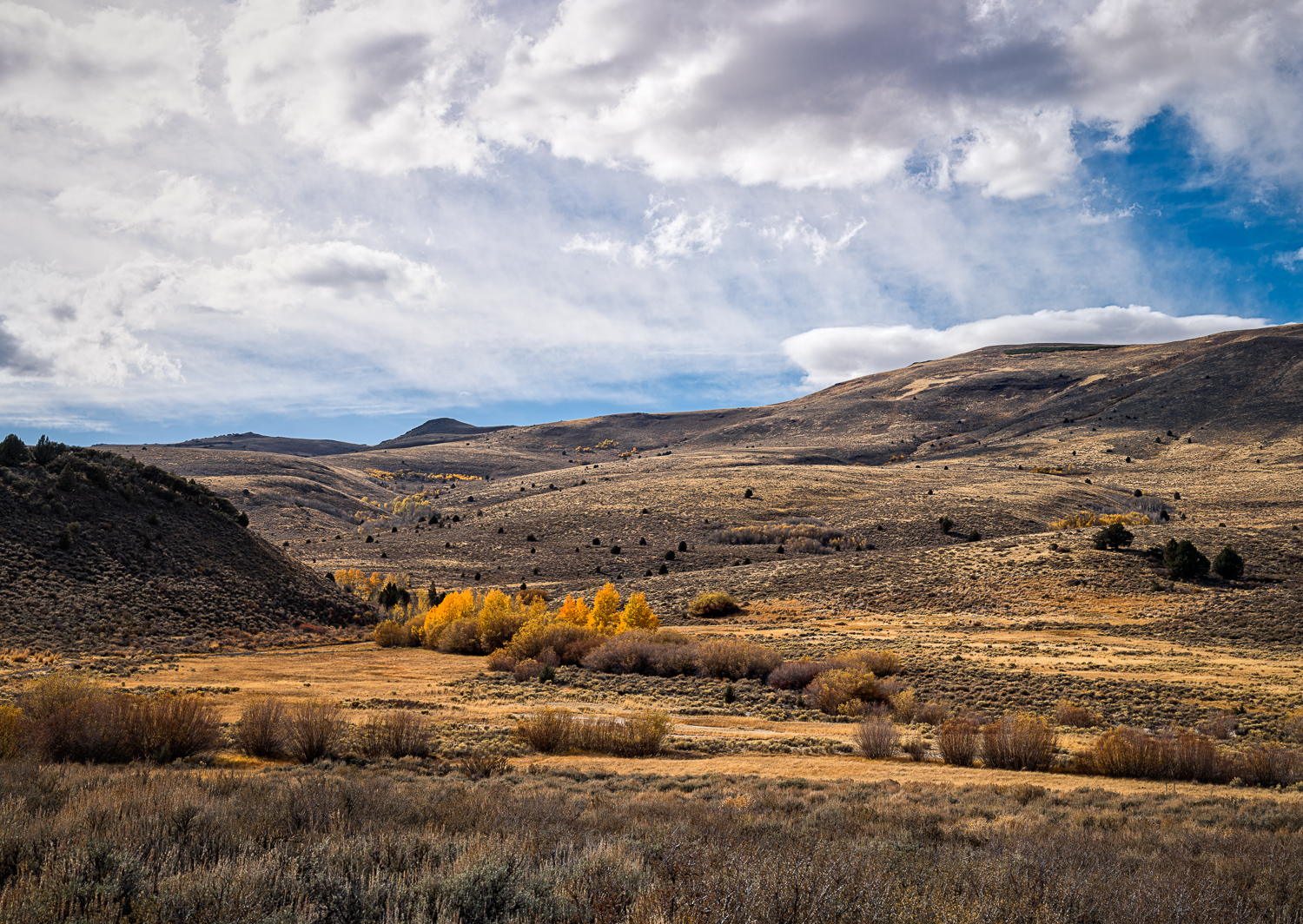 Heart Mountain Hot-springs: 15 image Panoramic Merger with Nikon D810 (Click Image to Enlarge)